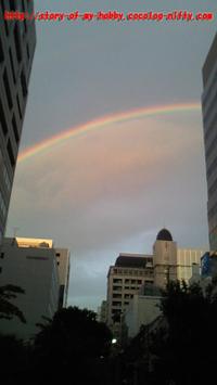ビルの谷間に虹の架け橋